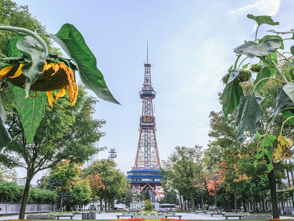 北海道のフリーター・ニート・無職が正社員就職を成功させる方法とは?